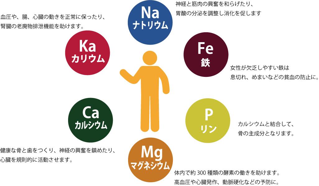 株式会社宮崎商店  いいお砂糖ドットコム